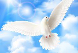 אמר לו החזון איש: צריך ללמוד מזה, לא לפחד מנפילה! נופלים אבל בסוף קמים!